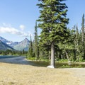 North Shore Trail starts at the campground.- Two Medicine Campground