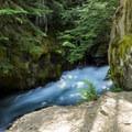 Avalanche Creek Canyon.- Avalanche Lake Hike