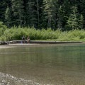 Avalanche Lake has good fishing for cutthroat trout.- Avalanche Lake Hike