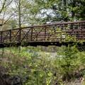 A pedestrian bridge at Natural Bridge State Park.- Natural Bridge State Park