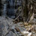 The Hudson Brook cuts through a deep gorge at Natural Bridge State Park.- Natural Bridge State Park