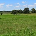 One thousand Cherokees fought Confederates here.- Pea Ridge National Military Park
