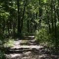 Easy hiking trails through the park.- Pea Ridge National Military Park