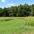General Curtis' headquarters were here.- Pea Ridge National Military Park