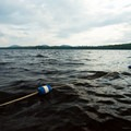 Buoys separate the shallow and deep portions of the swimming area.- Meacham Lake Beach