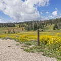 Large open meadows and views on the west side.- Point Supreme Campground