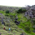 Kids can enjoy the trails that offer diverse terrain in a small area.- Koai'a Tree Sanctuary