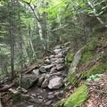 A steep, rocky section of the trail.- Presidential Traverse