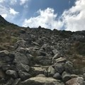 A well-made staircase of rocks is a nice break on the climb to the Airline/Gulfside Trail.- Presidential Traverse