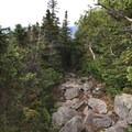 Israel Ridge Path leads toward the RMC Perch Shelter, far below the summit of Mount Jefferson.- Presidential Traverse