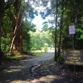 Entrance to the tent camping area.- Kalōpā State Park and Recreation Area Campground
