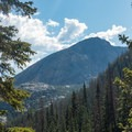 Views poking through the trees.- Andrews Glacier Trail