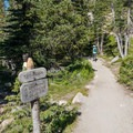 Head right at this trail intersection.- Andrews Glacier Trail