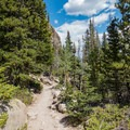 What the first couple miles of the trail are like.- Andrews Glacier Trail