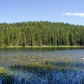 Otter Lake in the Three Sisters Wilderness.- Otter Lake