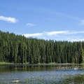 Otter Lake surrounded by an alpine forest.- Otter Lake