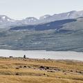 Looking back to the Lagarfljót River.- Litlanesfoss and Hengifoss