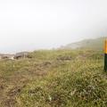 Follow the yellow stakes.- Neðri-Stafur and Seyðisfjörður