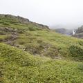 Over grass and mossy terrain.- Neðri-Stafur and Seyðisfjörður