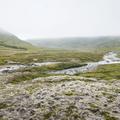 Green moss covers the landscape.- Neðri-Stafur and Seyðisfjörður
