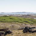 Looking toward the ocean and beach.- Djúpivogur Campground