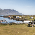 A field for tents overlooks the marina.- Djúpivogur Campground