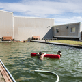 The large green algae pool.- Lýsuhólslaug Geothermal Pool