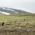Many hikers along the path.- Súlur