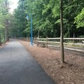 Woods along the waterfront in the South Mountain Recreation Complex.- South Mountain Recreation Complex Waterfront