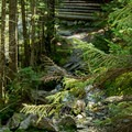 A small stream crossing at the base of the stairs before heading to the lodge.- Glen Ellen Hut