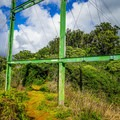 Pass under the power lines before reaching the mango tree junction.- Kalauao Gulch and Kalauao Falls