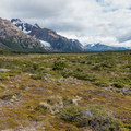 Meadow with trail intersections toward Laguna Madre and Rio Blanco.- Laguna de los Tres + Laguna Torre Circuit