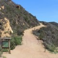 While the trail does offer shade, some sections of the trail near the end are quite exposed.- Santa Ynez Canyon Trail to Eagle Rock