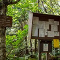 The trail registry and information kiosk is a few hundred feet from the parking area on the Long Trail.- Mount Ellen via the Long Trail