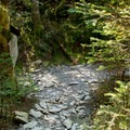 The intersection with the Barton Trail that leads to the Glen Ellen Lodge.- Mount Ellen via the Long Trail