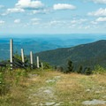 The Long Trail merges with a ski run that leads to the top.- Mount Ellen via the Long Trail