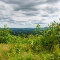 First view near the top.- Belfry Mountain Fire Tower