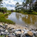 One of multiple small fishing spots along the bay on the Virginia side.- Assateague Island National Seashore