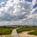 A walkway over the marsh.- Assateague Island National Seashore