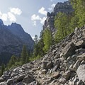 Scree fields accompany forests of fir on the trail to Patrol Cabin.- Death Canyon to Patrol Cabin