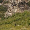 Bring your bear spray!- Death Canyon to Patrol Cabin