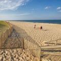 The sandy beach along the Atlantic.- Cape Henlopen State Park
