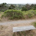 Viewpoint on the Estero Trail in Point Reyes National Seashore.- Limantour Estero via Muddy Hollow