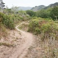 Nearing the end of the Estero Trail in Point Reyes National Seashore.- Limantour Estero via Muddy Hollow