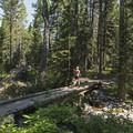 They say don't run and don't go alone in bear country. She is a rebel!- Granite Canyon