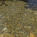 Can you believe how clear this water is?- Granite Canyon