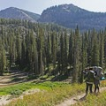 The large creek below looks tailor-made for wildlife viewing.- Granite Canyon