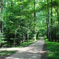 Many trails are wide and gravel throughout Caledon.- Caledon State Park