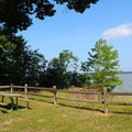 Potomac River Cliffs Overlook.- Caledon State Park