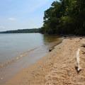 Potomac River shoreline.- Caledon State Park